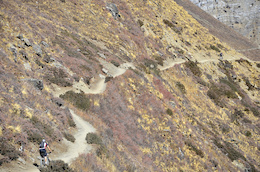 The awesome single track up to Throng Phedi at 4500m