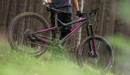 Commencal Descends on Canada - Seller Direct Sales