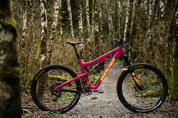 Santa Cruz Bronson: Review