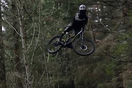 Colin Grant: Island Spring - Video