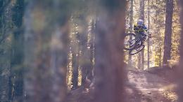Whistler Bike Park: Dual Diligence - Park Report