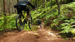 Tui Trip Part Two, Downhill - Video