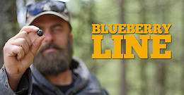 Blueberry Line, New Trail in Livigno - Video