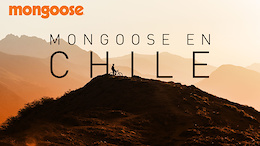 Mongoose en Chile - Video