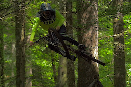 Full Throttle Through the Forest - Video