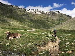 Trans-Rezia All Mountain Enduro 2016