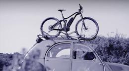 Regis 2: An Artistic Look at Biking - Video