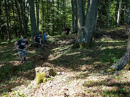 Trail building in June 2016.