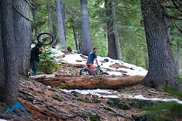 Fat Bike Freeridin'  in Bend, Oregon - Video