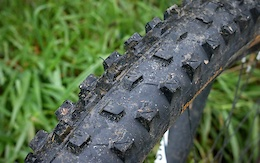 Continental Der Baron 2.4 Projekt Tire - Review