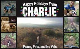 Happy Holidays From Charlie