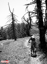 Seven Reasons to Pedal Your Bike – Seven Summits Trail, Rossland, BC