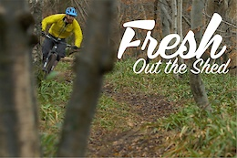 Fresh Out the Shed - Video