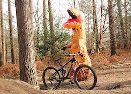 Matt Jones: MTB T-Rex - Video