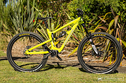 The Zerode Taniwha Comes to the US