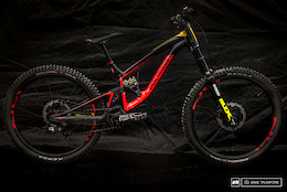 Alex Fayolle's Polygon DH9 – Bike Check