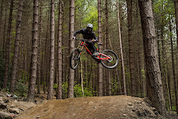 Into The Woods, Charlie Flynn - Video