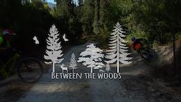 Between the Woods - Video