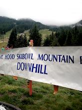 Mt Hood's Shiloh Showdown DH Finals