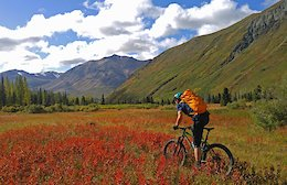 Yukon Mountain Biking: Part 2 - Kluane National Park