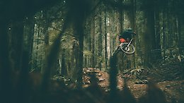 British Columbia Trail Shredding - Video