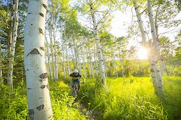 Colorado's 5 Most Popular Trail Networks According to Trailforks Data