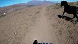 Privateer Life on the Enduro Race Scene: EWS or Bust in Chile - Video