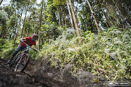 Why Adrien Dailly, Florian Nicolai, & Dimitri Tordo Were Penalized at EWS Colombia