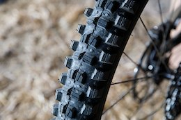 First Ride: WTB's 2019 Tires & Rims