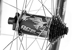 Aaron Gwin's Signature e*thirteen AG1r Wheels Have Almost Enough Eagles
