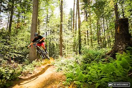 Vermont's 5 Most Popular Trail Networks According to Trailforks Data