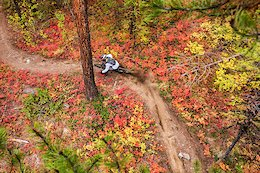 Video: Ripping Through the Gorgeous Fall Colours