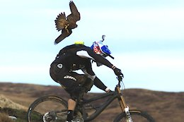 Throwback Thursday: Gee Atherton Hunted by a Peregrine Falcon