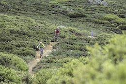 3 Days Riding Australia's Original Mountain Bike Trails in Victoria's High Country