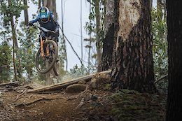 Video & Race Report: Trans Madeira 2019 - Day 5