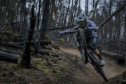 Video: Rob Williams' EWS Training in a Burnt-Out Welsh Forest