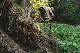 FSA Announces Details for Crankworx Rooted In The Woods Contest