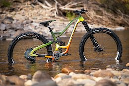 The Fishiest Custom Painted Bike - Niner's Trout 9 RDO