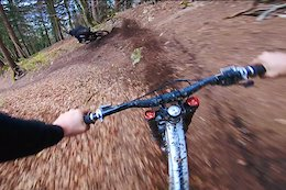 Video: Vinny T Dashing Through the Leaves, on a 2 Wheeled Alloy Sled