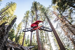 Video: First Sends on a Steep Freeride Trail in 'Tempo'