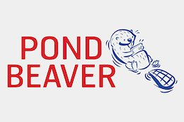 The Ultimate Recap of Pond Beaver 2020