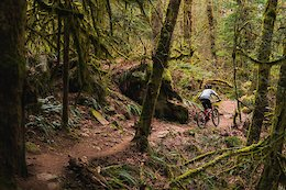 Pinkbike Poll: If Every Ride Was Solo, Would You Still Mountain Bike?