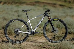 First Look: Orbea's New XC Race Hardtail - the  Alma