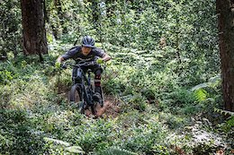 Video: Olly Wilkins Kicking Up Roost in the Surrey Hills