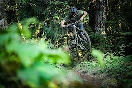 Video: Exploring Trails in the Yacolt Burn Forest
