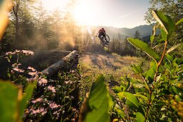 Local Flavours: The Complete Guide to Riding in Fernie, British Columbia