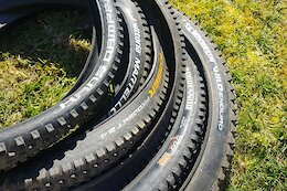 Review: 6 Hard-Hitting Rear Tires Ridden & Rated