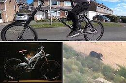 Slack Randoms: Hydraulic Bikes, Bears 'Chasing' Mountain Bikers & More
