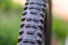 Review: Schwalbe's Big Betty Tire is Dependable & Durable