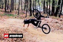 Video: Friday Fails #171